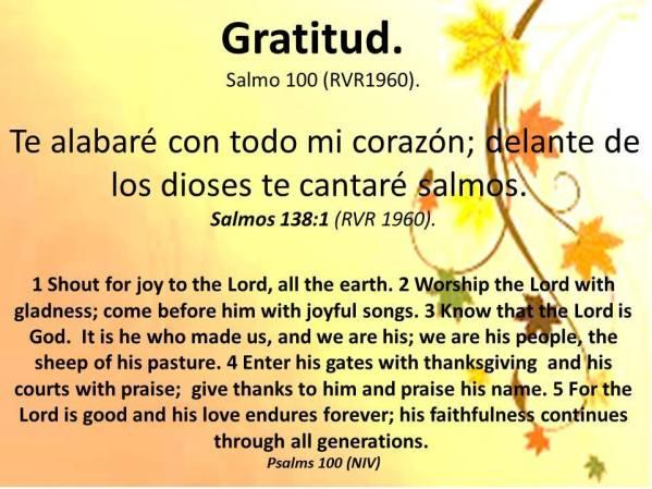11 Gratitud 111917