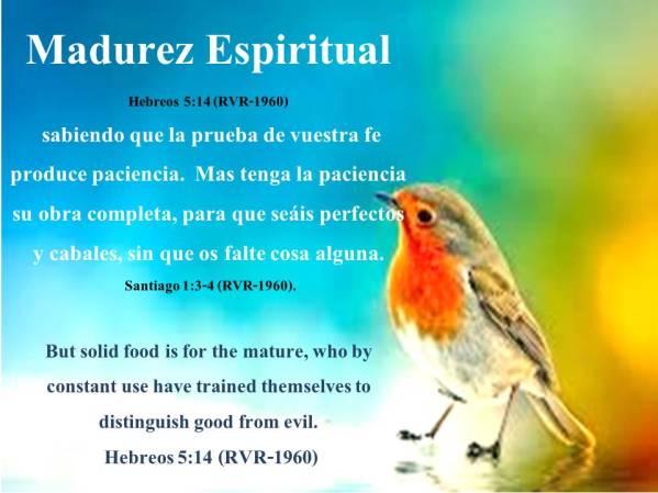 01 Madurez Espiritual 012818