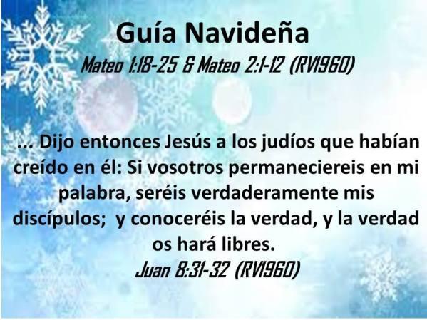 12 Guia Navideña 123017